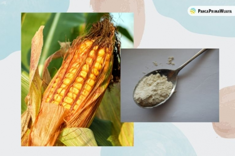 Advantages of Indonesian Corn Flour Extraction
