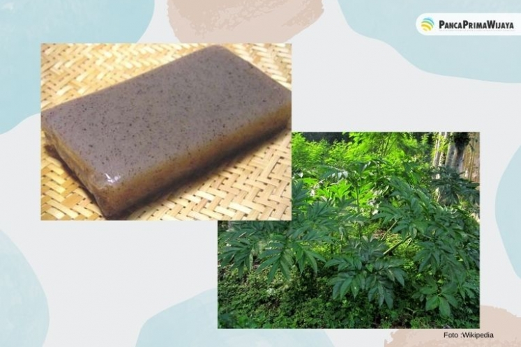 Advantages of Indonesian Konjac Extraction