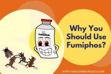 Why You Should Choose FUMIPHOS For Your Warehouse Fumigation?