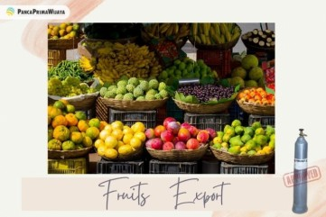 How to Organize Fruits Export Successfully